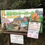 Foto de Monkey Park Iwatayama