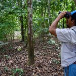 Our Surcos Tours guide Pablo spotting wildlife.