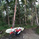 Photo of Buddha's Surf Resort