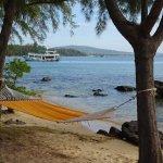 Zdjęcie Mango Bay Resort