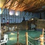 Photo de Grizzly Jack's Grand Bear Resort