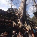 Photo of Angkor Wat