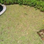 """Der """"tropische Garten"""" Marma 3"""