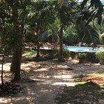 Photo de Green Garden Cabanas & Resort
