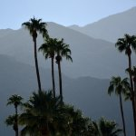 Photo of The Saguaro Palm Springs