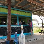 Great food, great people, our favourite beach bar