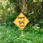 Local warning signs