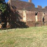 Foto de Barboursville Vineyards and Historic Ruins