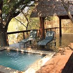 Photo of Elephant Plains Game Lodge