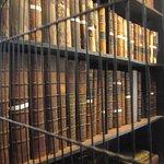 Plethora of treasured books