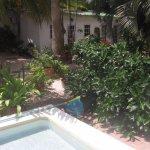 Zicht op appartementjes in de tuin