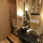 Toilet and vanity area.