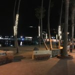 Lighted palm trees along the Promenade near the hotel