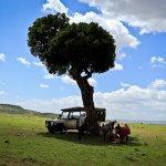Foto de Porini Mara Camp