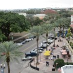 From Canopy: Best View of Beach Drive Area