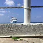 Visited while on a cruise, saw a lizard