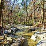 Photo de Land Trust of North Alabama