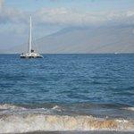 catamaran coming into shore