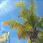 Photo of Smugglers Cove Resort and Marina