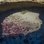 Le cratère où se rassemblent les lions de mer