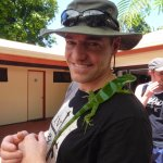 rare endemic Fijian iguana