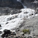 The Bow Falls
