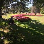 Photo of Pollard Park