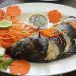 ภาพถ่ายของ Curry Delight Indian Restaurant