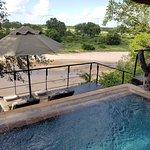 Singita Ebony Lodge Bild
