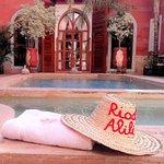 Photo of Riad Alili