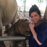 Foto di Baanchang Elephant Park - Private Day Tours
