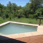 Idube Makubela suite #1 private plunge pool
