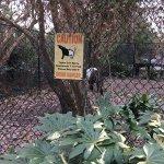 Photo de Virginia Zoo