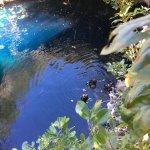 Scuba Dive at Blue Hole