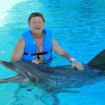 Petting the dolphin