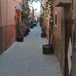 Beautiful quiet street!