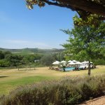 Photo of Cultivar Guest Lodge