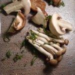 champignons sauvages pour le risotto al funghi