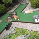 Some of the living obstacles on the course :)