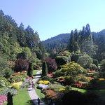 beautiful view of gardens and surrounding nature