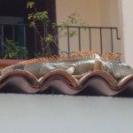 Foto di Playa Los Arcos Hotel Beach Resort & Spa