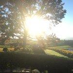 Foto de Ruby Bay Vineyard Lodge & Cottage
