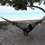 A mid afternoon snooze on this hammock is priceless !