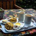 Flock Inn cafe & tea shop