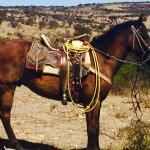 Foto de Coyote Canyon Adventures