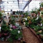 Bellandris Garten-Center Rosenheim