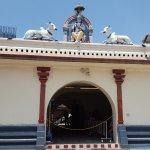 Photo of Sri Mariamman Temple