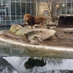 Foto de Tierpark Hellabrunn