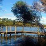 Balcombe Estuary Reserves