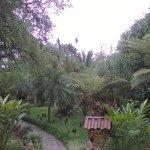 Gambar Hotel Kokoro Arenal